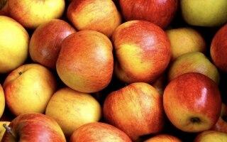 10 frutti di stagione per la spesa di ottobre