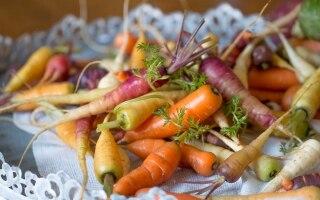Le carote: alternative all'arancione