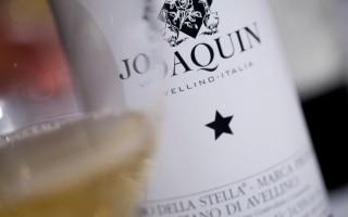 DOCG Fiano di Avellino Vino della Stella -...