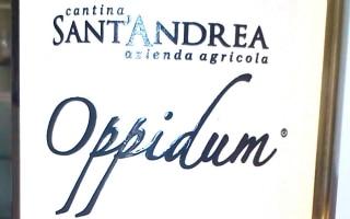 DOC Moscato di Terracina secco Oppidum –...