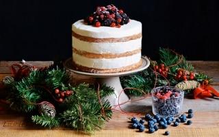 Naked cake allo zenzero