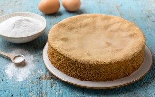 Pan di Spagna di riso senza glutine
