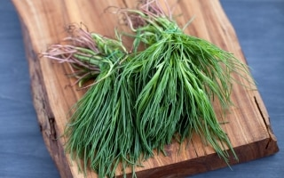 17 verdure di stagione per la spesa di marzo
