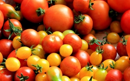 14 verdure di stagione per la spesa di agosto