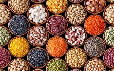 I legumi, preziosi alleati della nostra alimentazione. Ecco perché fanno bene.