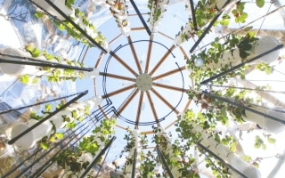 La Vertical Farm al Festival del Verde e del...
