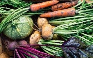Boom di acquisti di alimenti bio: +21% in un...