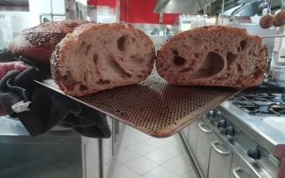 Vi raccontiamo il pane di corteccia che fa...