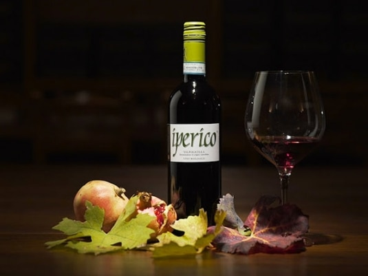 10 vini economici, ecologici e buonissimi!