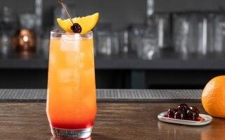 I 22 migliori cocktail da fare a casa: drink...