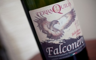 IGT Lambrusco dell'Emilia Falconero -...