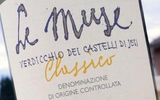 DOC Verdicchio dei Castelli di Jesi Classico...