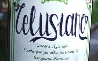 DOC Falerio dei Colli Ascolani Telusiano –...