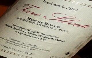IGT Marche Bianco Terre Silvate – La...