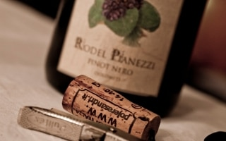 IGT Vigneti delle Dolomiti Pinot Nero Rodel...