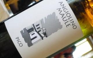 IGT Monte di Mezzo Garganega del Veneto...