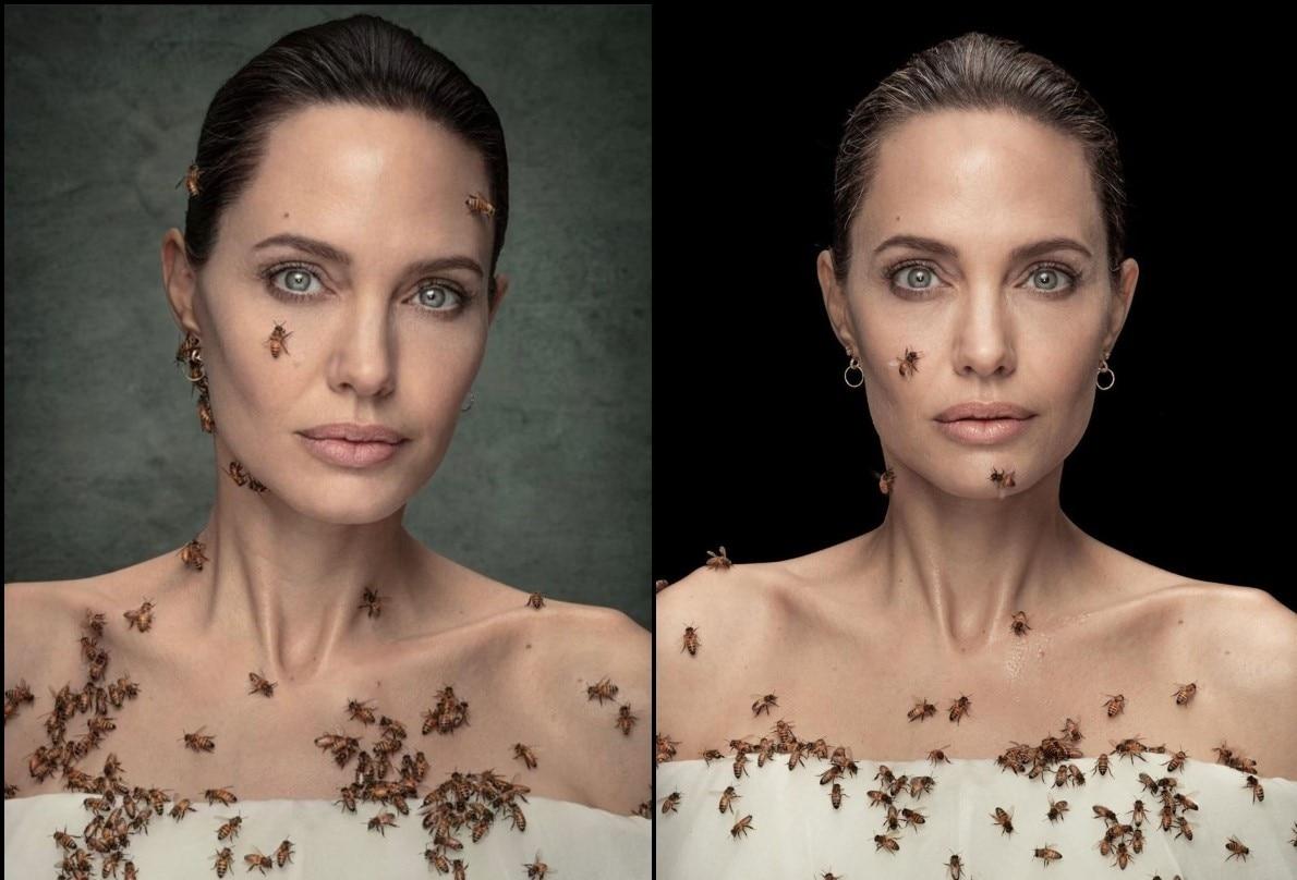 Da Angelina Jolie a Leonardo DiCaprio, ecco le star che difendono l'ambiente