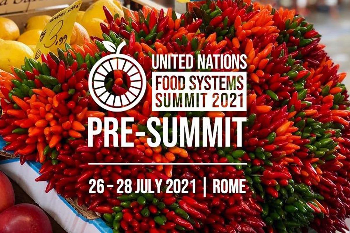 È in corso a Roma il Pre Summit della FAO sui Sistemi alimentari. Ecco di cosa si tratta