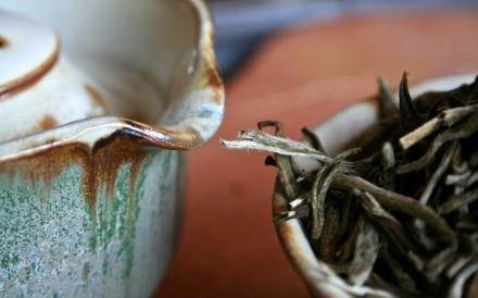 Il Canone del Tè   Il Tè, una vibrazione. Dalla pianta,...