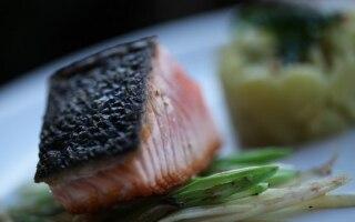 Salmone, pop corn di Quinoa e menta fritta